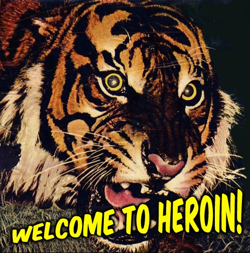 WELCOME TO HEROIN_Where Excuses Go to Die
