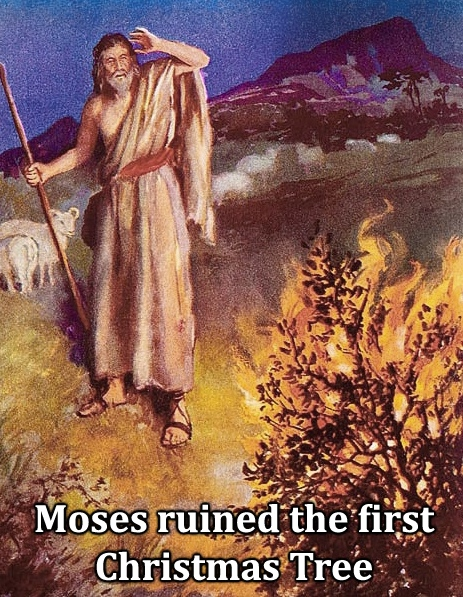 Moses Ruined the First Christmas Tree_Where Excuses Go to Die